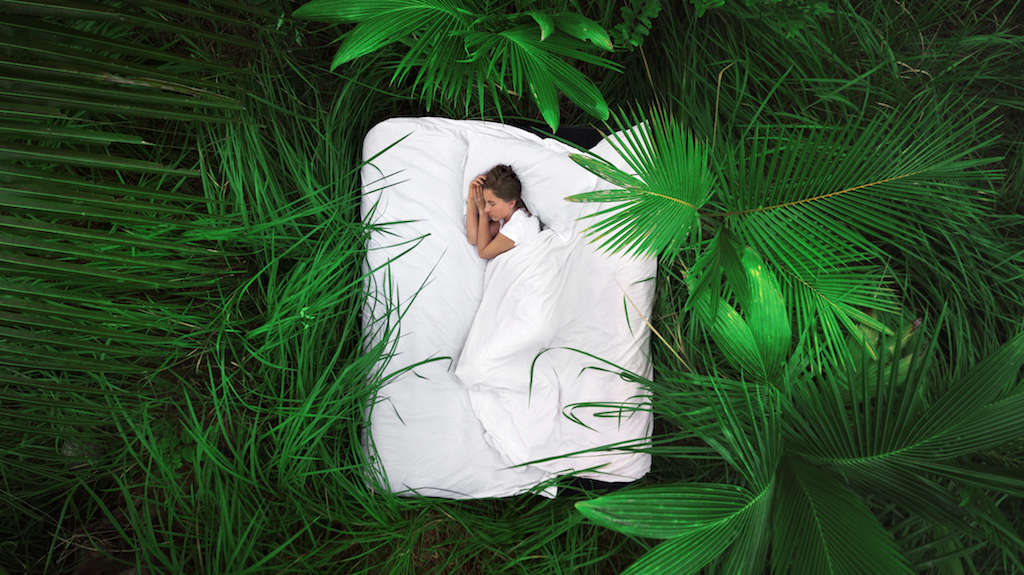 Sleeping woman in deep jungle forest lies on airbed,View from above. Dream concept