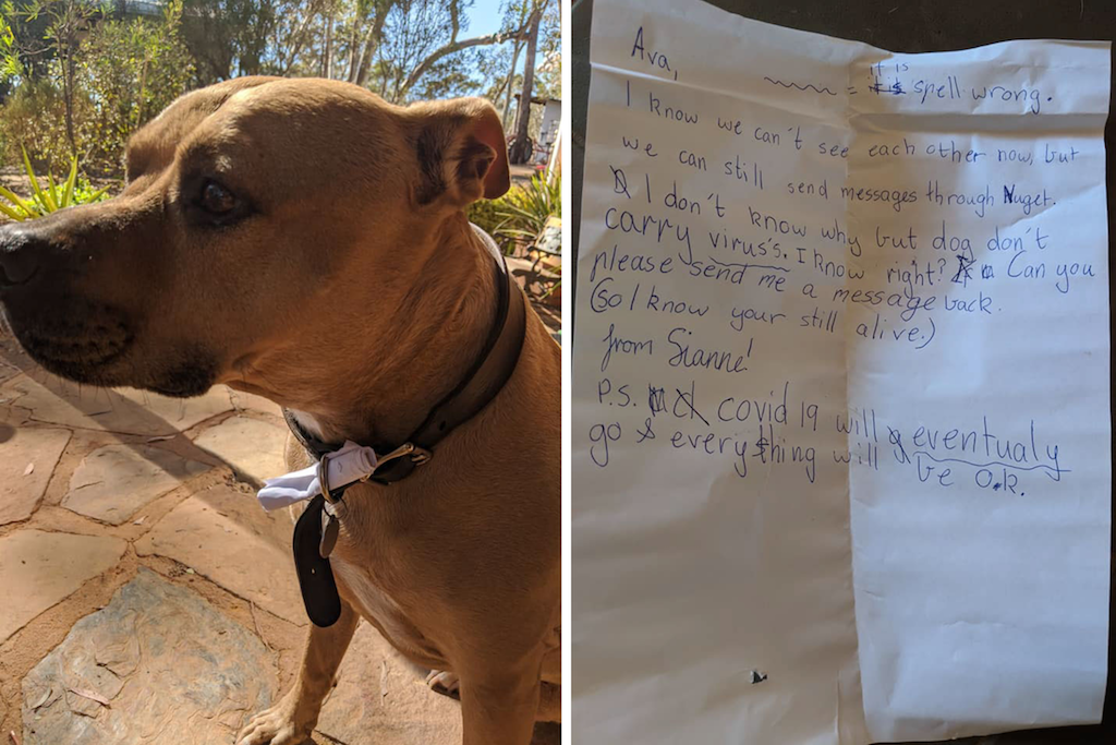 Nugget with a note in his collar next to image of Sianne's first note to Ava